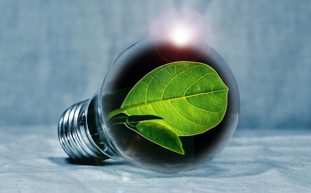 Den Billigaste Gröna Elen - Sol, vind eller vatten